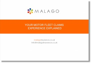 motor fleet explained